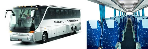 Private Luxury Shuttle for Family friends or staff